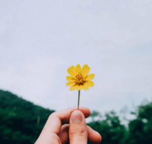 Feeling Gratitude Through Absence