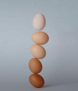 Circle of Balance Points